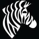 _Zebra_