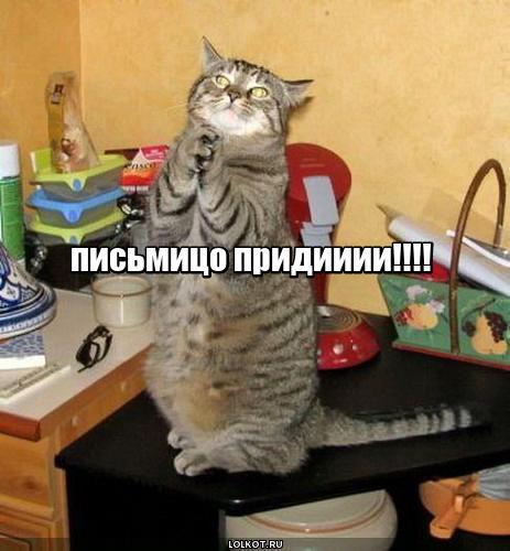 lol1470386075.jpg