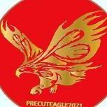 0PreCutEagle71