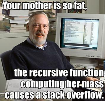 your_mother_is_so_fat_the_recursive_function_computing_her_mass_causes_a_stack_overflow.jpg