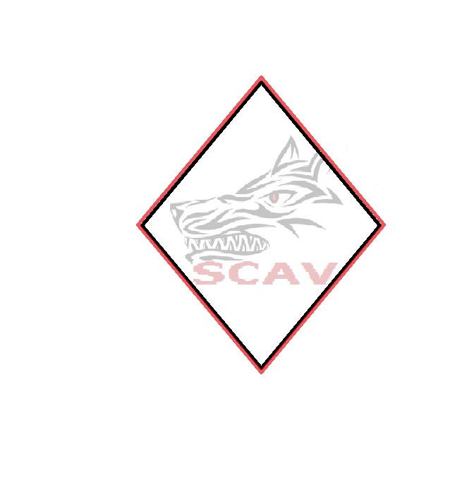 29541887-wolf-kopf-tribal-tattoo-design-vektordatei.jpg