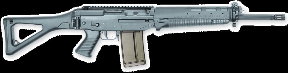 SG_751_Predslon_Rifle.thumb.png.6bec4b3922ec6aa3f5f1dac48f32fa53.png