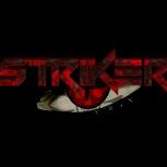 TheOneStriker