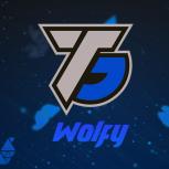 WolfyDesignsTV