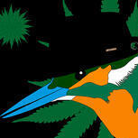 MrKingfisher