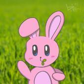 pinkrabbit412