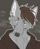 Wolf___