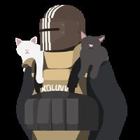 TN-Punisher